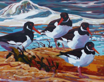 Brin Edwards Four Cornish Oyster Catchers