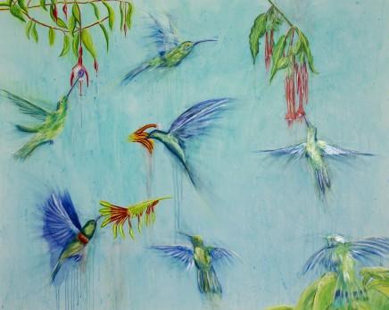 Sarah Elder Hummingbirds