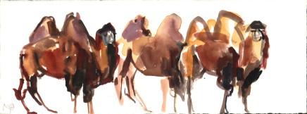 Mark Adlington , 10. Camels, Mongolia, 2019