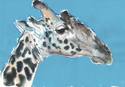 Mark Adlington , 61. Masai Giraffe Bull, 2019