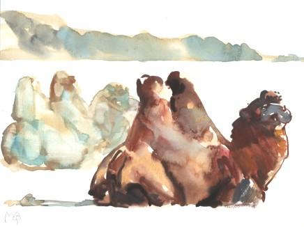 Mark Adlington , 11. Bactrian Camels, Gobi Desert , 2019