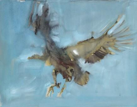 Mark Adlington , 08. Soaring Flight (Vulture) , 2019