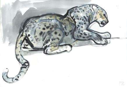 Mark Adlington , 23. Crouching Arabian Leopard, 2019