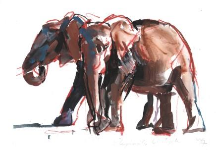Mark Adlington , 46. Elephants, Ol Pejeta, 2019