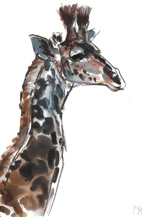 Mark Adlington , 54. Young Masai Giraffe, 2019