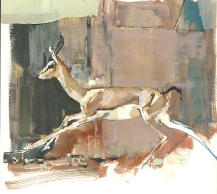 Mark Adlington , 19. Running Arabian Gazelle, 2019
