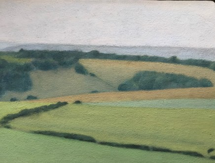 David Stubbs, Sussex Downs Near East Dean, Study