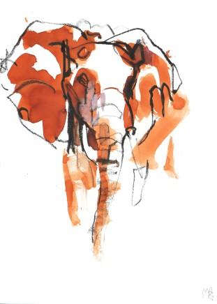 Mark Adlington , 47. Elephant Portrait, 2019