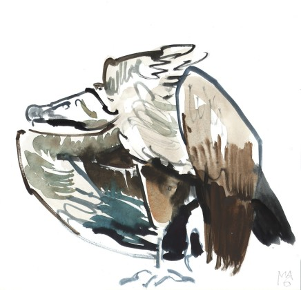 Mark Adlington , 09. Vulture , 2019