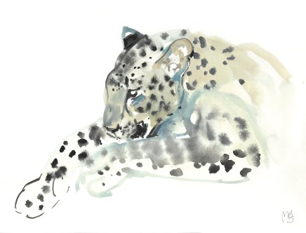 Mark Adlington , 22. Resting Arabian Leopard, 2019