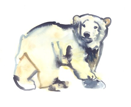 Mark Adlington , 32. Polar Bear Cub, 2019