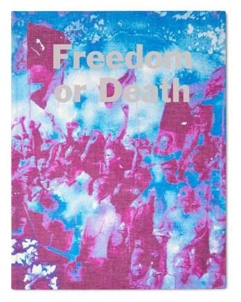 Freedom or Death, Gideon Mendel