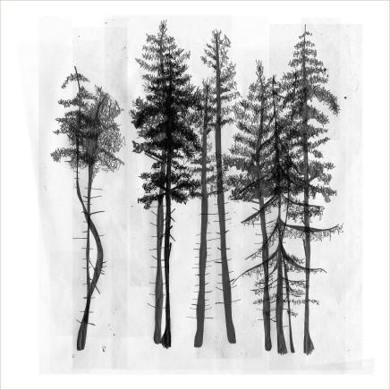 Arboria 2