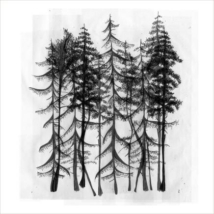 Arboria 1