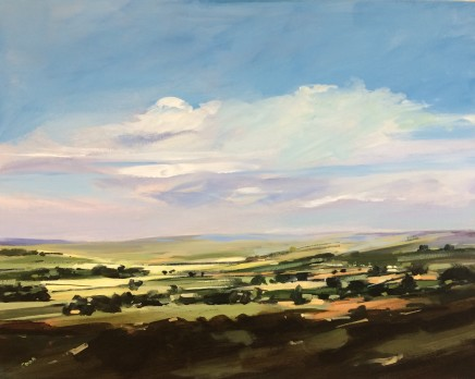 Colin Cook, Rosedale in summer