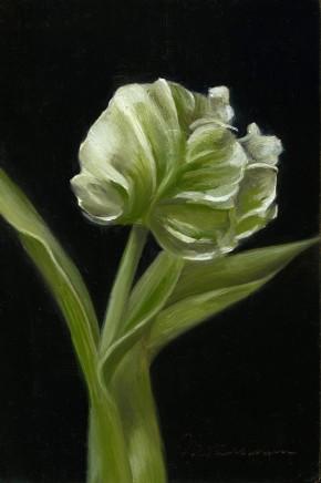 Tanja Moderscheim, Parrot Tulip II