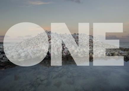 One Planet One Future - Anne De Carbuccia