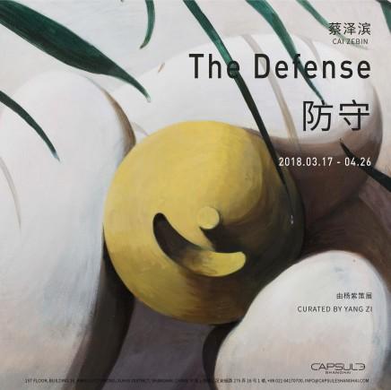 Cai Zebin: The Defense