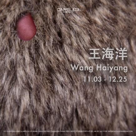 Wang Haiyang