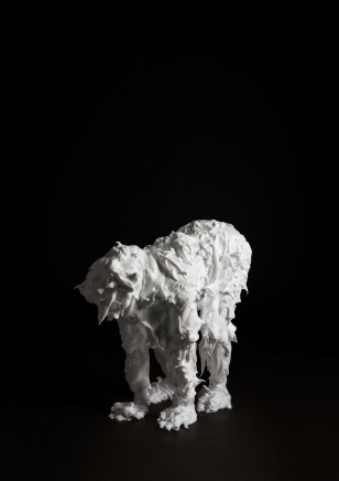Marcus Coates, Fox Moth, Macrothylacia rubi (adult) Self Portrait, shaving foam, 2013