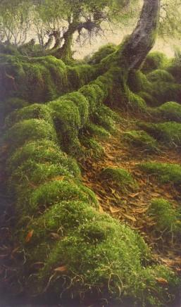 Gerald Dewsbury, Extended Root