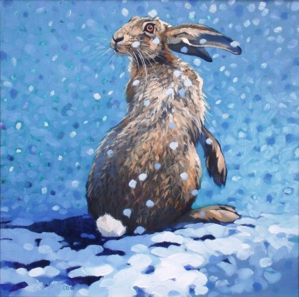 Colin See-Paynton, Snow Hare II
