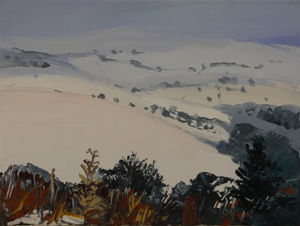 Sarah Carvell, Brightness on the Snow, Offas Dyke