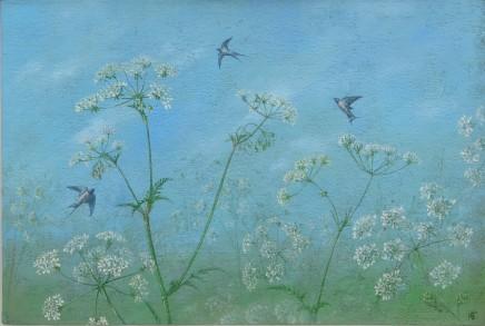 Kim Dewsbury, Pignut and Swallows