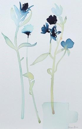 Susan Kane, Inky Blue
