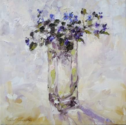 David Grosvenor, Viola Labradorica