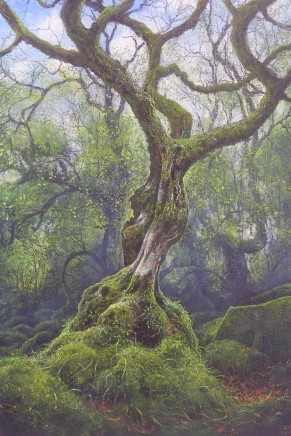 Gerald Dewsbury, Twirling Birch