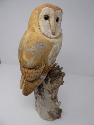 John & Marilyn Davies, Barn Owl
