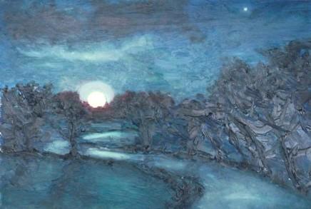 David Lloyd Griffith, Super Moon - Trofarth