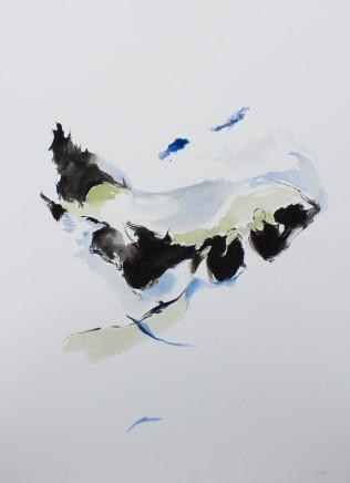 Lisa Carter-Grist, Sky Fields