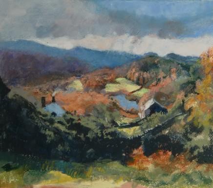 Anne Aspinall, Plas Llandecwyn and Lake