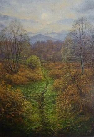Gerald Dewsbury, Path Through Tir Stent
