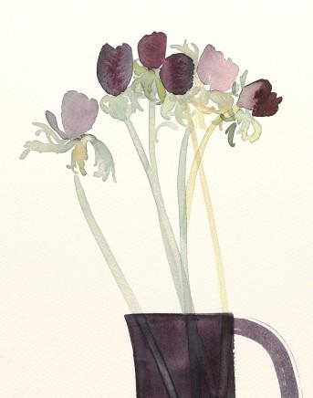 Susan Kane, Black Anemones