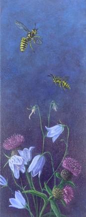 Kim Dewsbury, Garden Life with Harebells & Knapweed