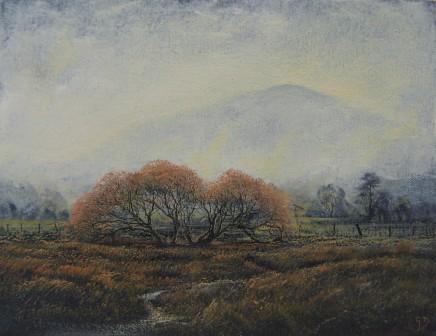 Gerald Dewsbury, Moel Caws in the Mist