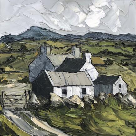 Martin Llewellyn, Farmstead