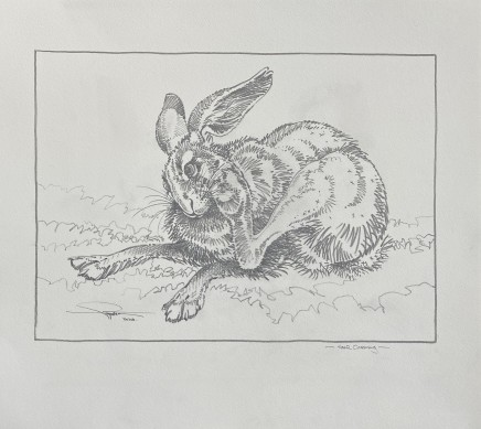 Colin See-Paynton, Hare Grooming I