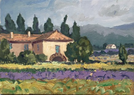 Gareth Thomas, Lavender near Valreas