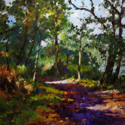 David Grosvenor, Woodland Walk, Tan y Bwlch VI