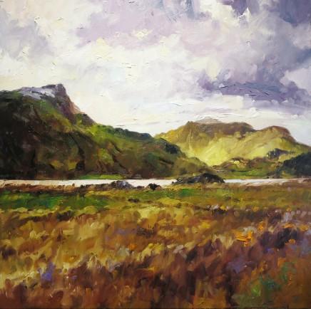 David Grosvenor, Y Garn from Llyn y Gader