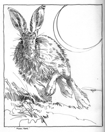 Colin See-Paynton, Moon Hare
