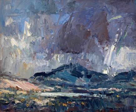 Gareth Parry, Llyn Bach yn y Mynydd, Arenig / Little Lake in Mountains, Arenig