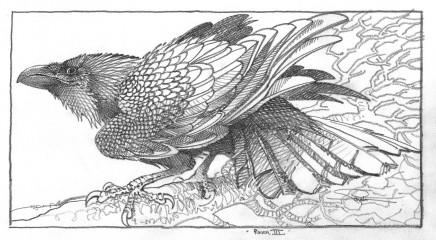 Colin See-Paynton, Raven III