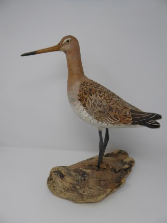 John & Marilyn Davies, Black-tailed Godwit