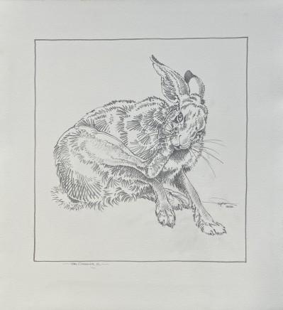 Colin See-Paynton, Hare Grooming II