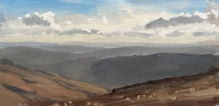 Matthew Wood, The Vyrnwy Valley looking South